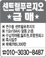 전세모집(010-7315-7499)